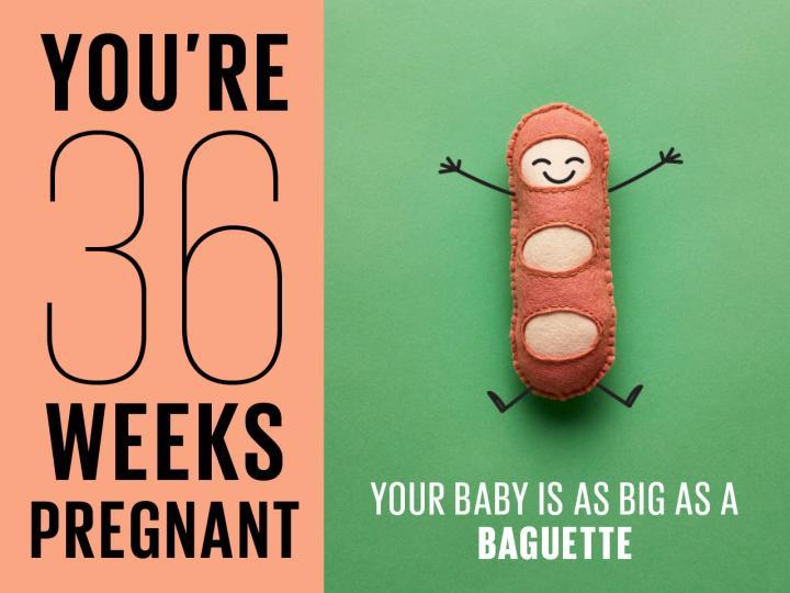 36. Hafta : Alın Bu BebeğiBuradan